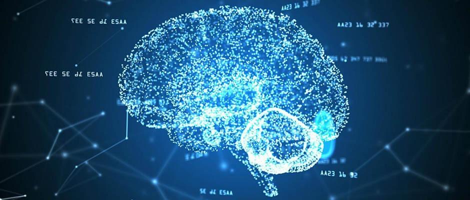 Neurociencias: ¿Especulación financiera o ciencia?